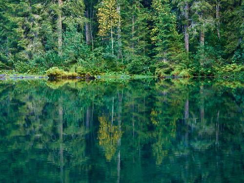 trees italy reflection trentinoaltoadige lagoditovel olympusep1 beffythewitch