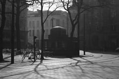 Den Haag b/w