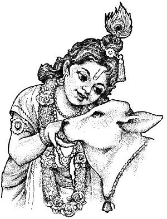 ... lord-sri-krishna-wallpaper | by sajivelaketh