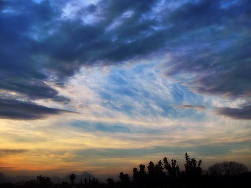Evening cirrus clouds
