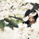 Sakura #6