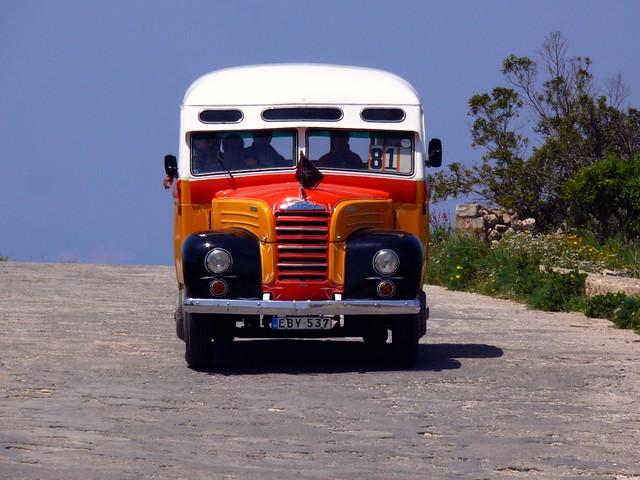 Malta Bus, Dingli