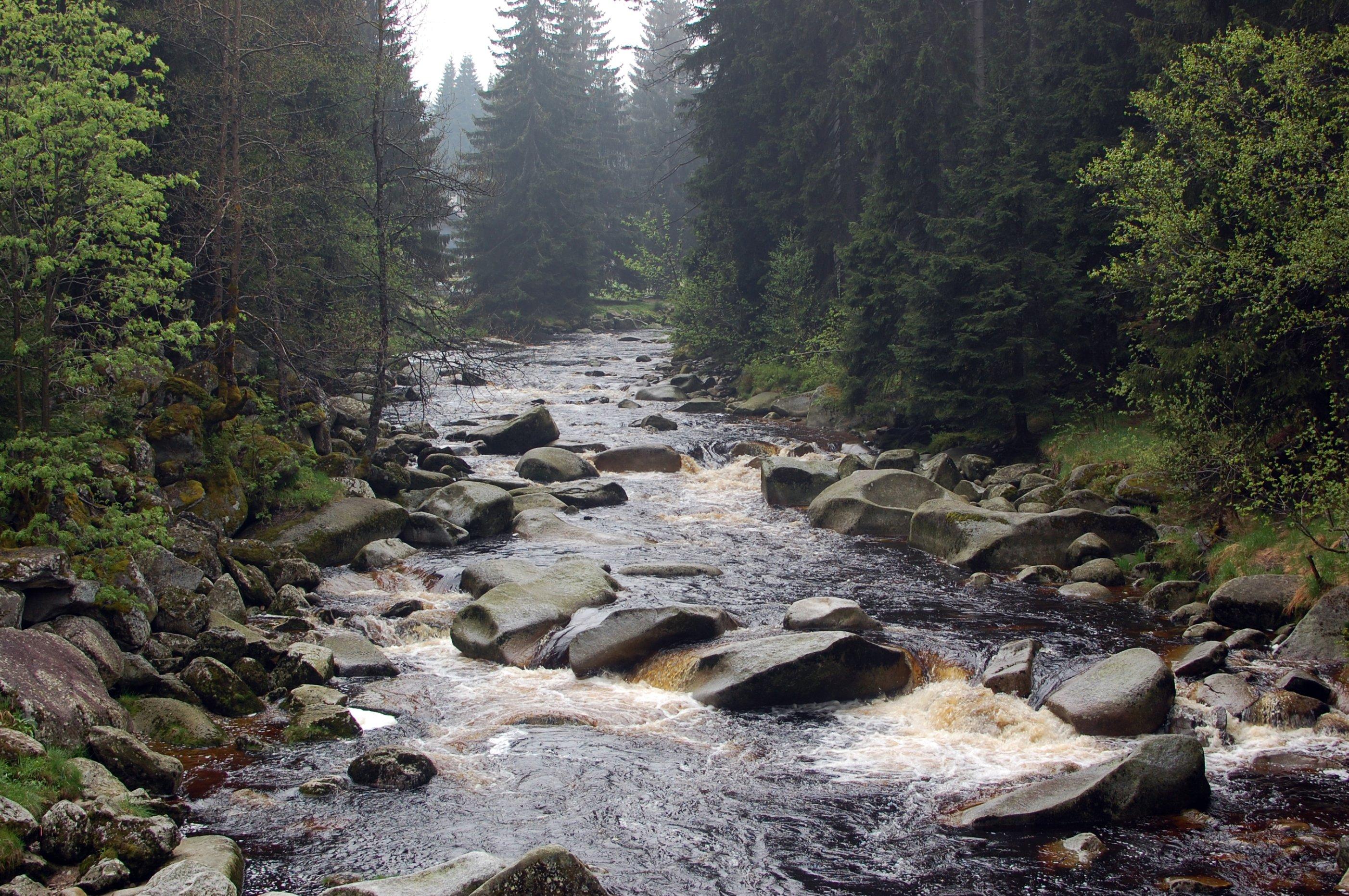 řeka Vydra kousek pod Modravou