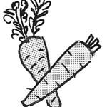 1-07-45-carrot