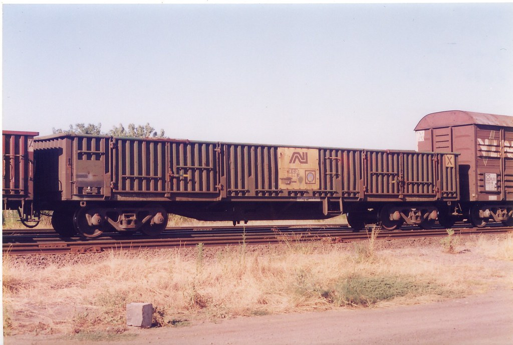 RCDX 64 J Dynon 12/1999 by Norm Bray