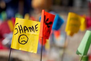 SHAME Flag | by BlueRobot