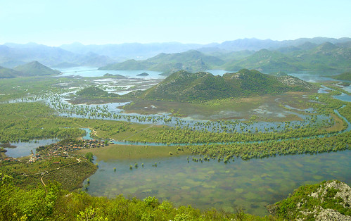 skadar lake- magic montenegro | by Sandra Djurbuzovic