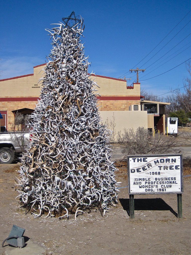 Deer Horn Tree Junction Tx The Deer Horn Tree In Junctio Flickr