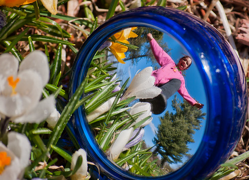 flowers sun reflection project giant easter fun mirror pentax daughter 365 threat