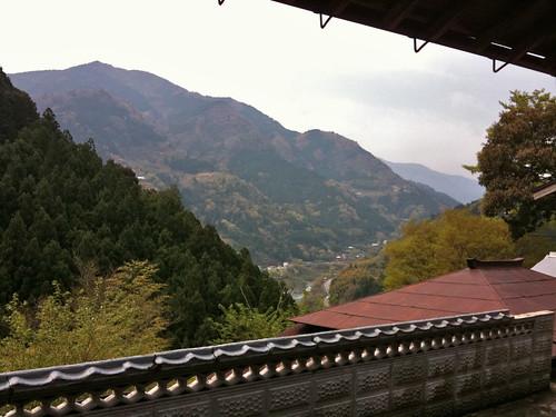 vacation holiday japan shikoku 2011 april2011 otoyocho happyraftguesthouse