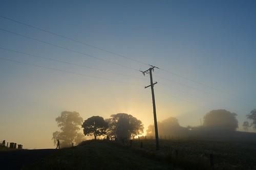 road morning trees sun fog sunrise countryside australia crest pole wires nsw figure hilltop northernrivers morninglandscape keerrong teraniacreekvalley pinchinroad