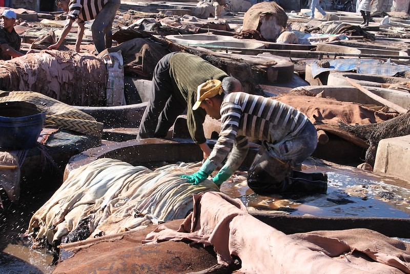Smelly work with potent chemicals, Marrakesh Tanneries, Morocco