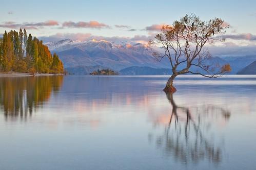 new pink sky mountain lake reflection water clouds sunrise zealand range wanaka