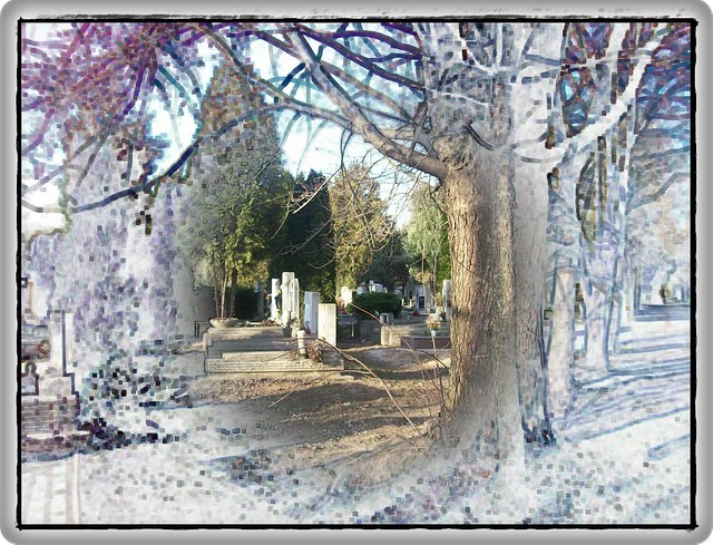 Cemetery in Budapest-A cinkotai temetőben
