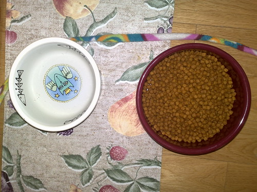 Filled water & food bowls | by allaboutgeorge