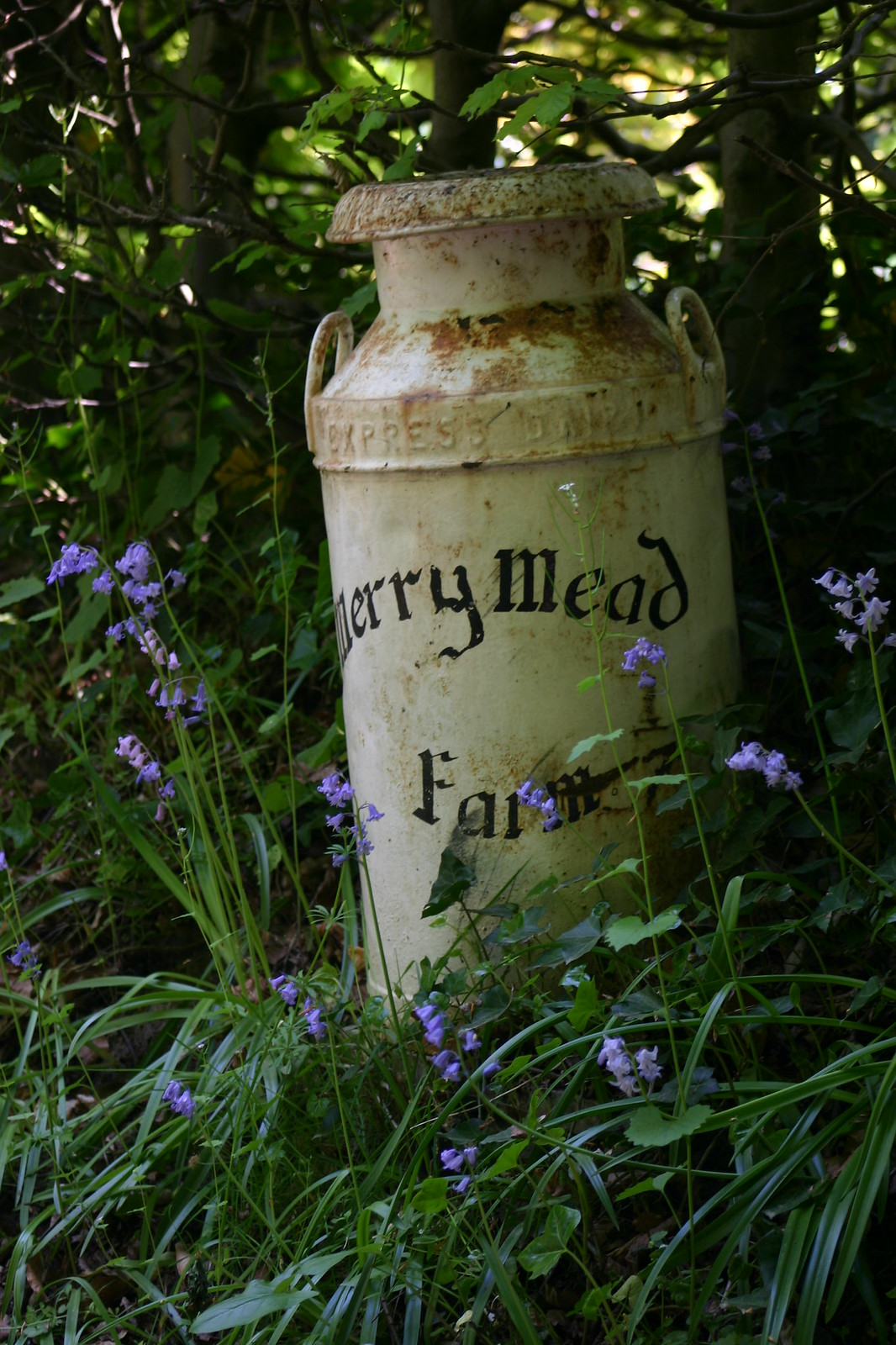 Merry Mead Farm churn