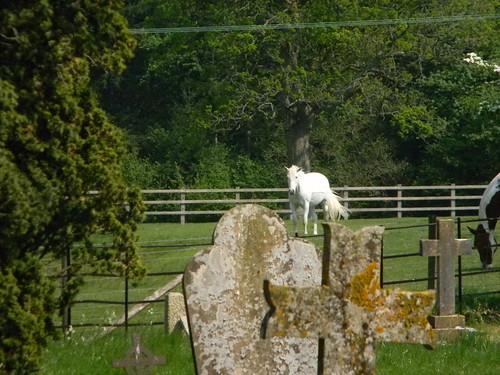 White Horse Steventon Church Overton Circular