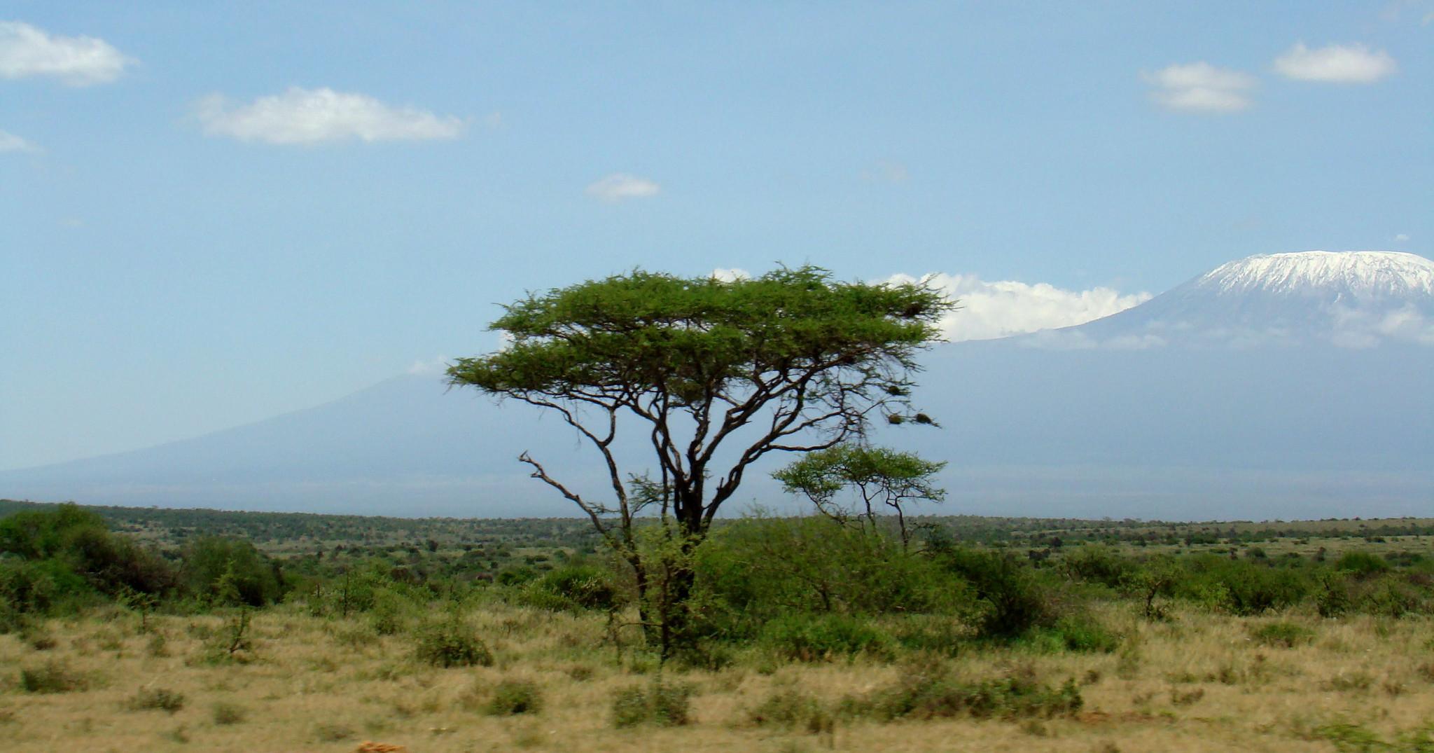 Monte Kilimanjaro Kenia Africa 02