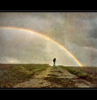 Under the Rainbow - Optimism | by h.koppdelaney