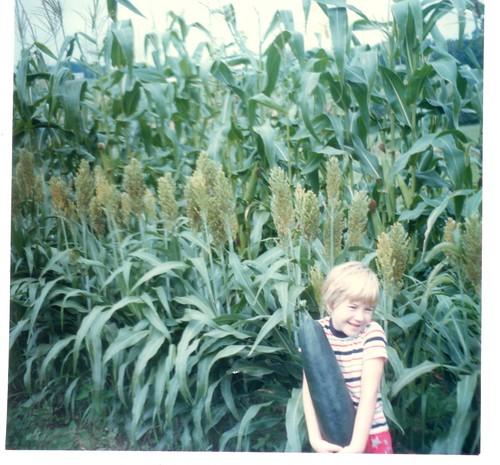 Bountiful Harvest | by valockett