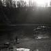 fishing in dark waters