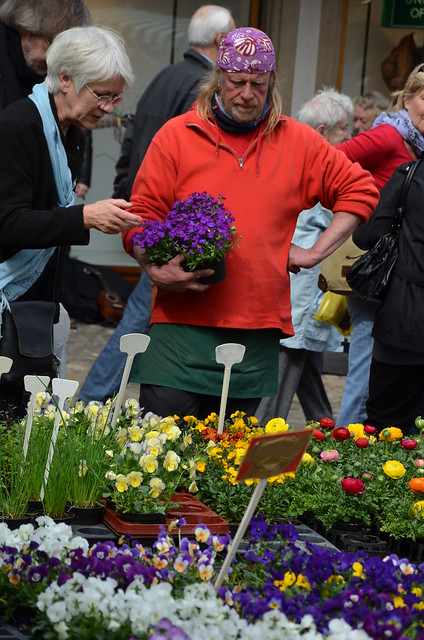 Couleurs du printemps  -  Colors of the spring