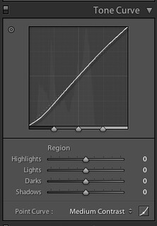Tone Curve Set To Use Sliders As Default