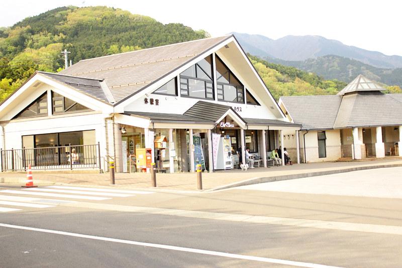 20110429_塔ノ岳(表尾根)_0056