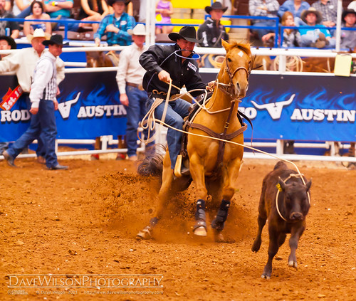 austin texas tx rodeo rodeoaustin