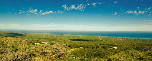 africa sea sky panorama game nature forest landscape nikon reserve seaview portelizabeth