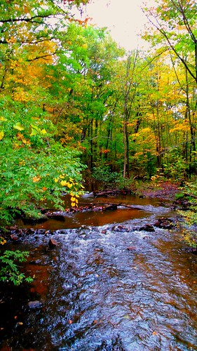 nct hike100nct fall autumn october android usa michigan stream creek water river