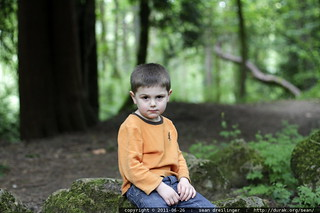 sitting still for about 100 shots to comprise a panoramic portrait - MG 3437.JPG | by sean dreilinger