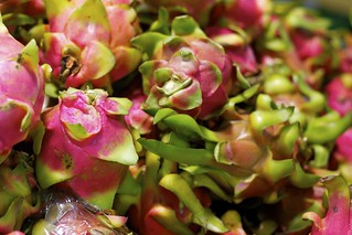 Dragon Fruit | by Leigh_Murrell