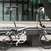 Phoenix Cycles by Sarf London