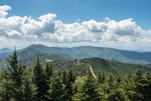 At the Top of Mount Mitchell | by Kolin Toney