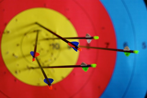 91/366: Arrows in target | by Rrrodrigo