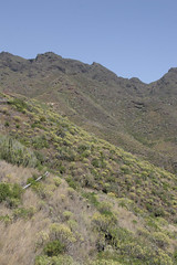 Anaga Mountains, Tenerife_2008_04_28 003.jpg