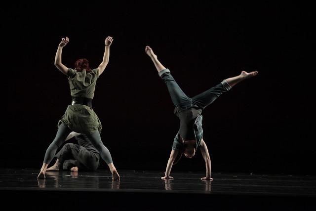 Hofstra Dance Program