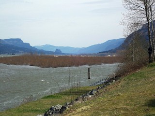 Columbia River, looking upstream (east) from Rooster Rock