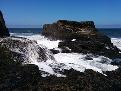 High Tide Brings an End to Tidepooling