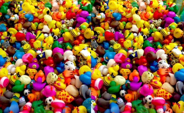 Duckies, 3D photo (cross view)