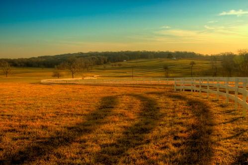 nature sunrise fence landscape delete2 texas farm save3 delete3 save7 save8 delete save save2 save9 save4 save5 save10 save6 brenham lillianfarms savedbythehotboxgroup
