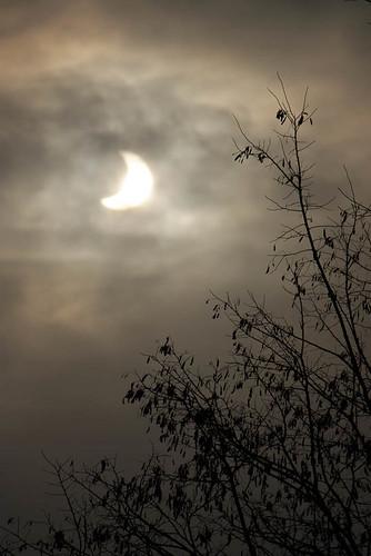 warszawa księżyc słońce drzewo bemowo chmury zaćmienie ciemne zachmurzenie s³oñce ksiê¿yc zaæmienie