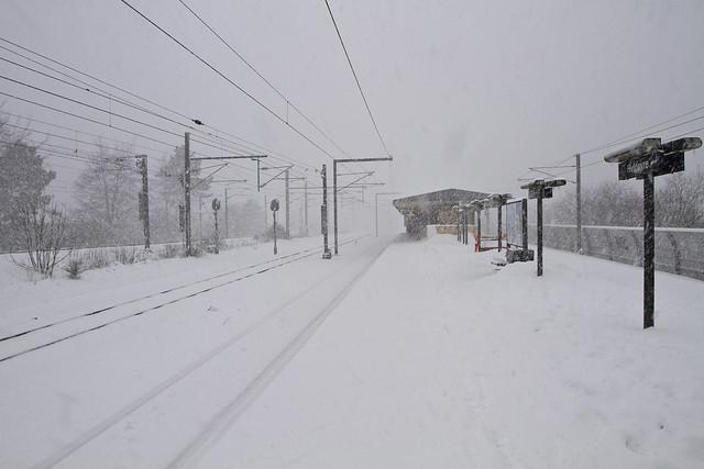 hvidovre station