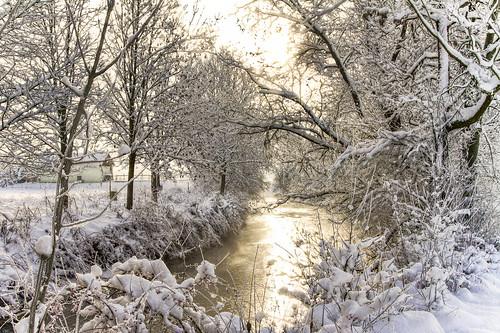 warm winter   by hjjanisch