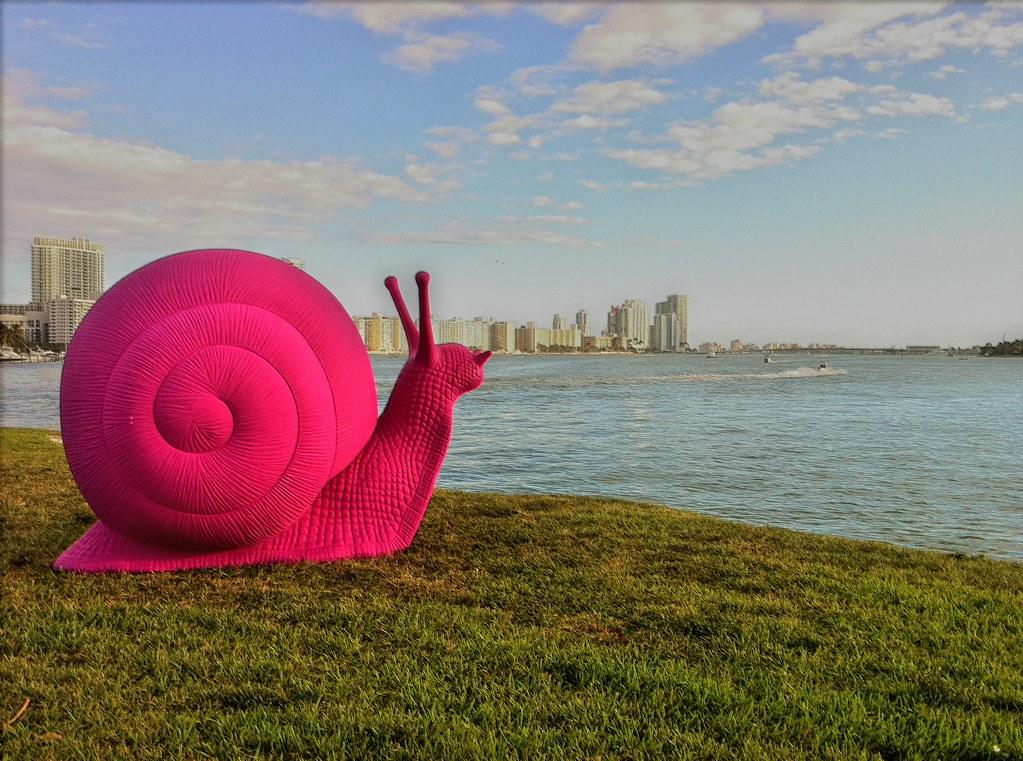 Pink Snails - Art Basel
