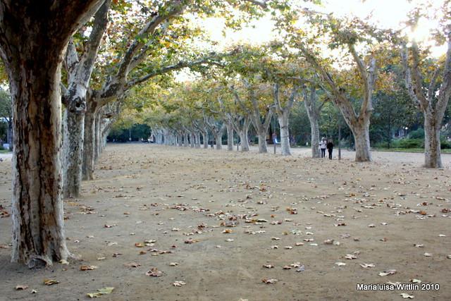 city park Tortosa