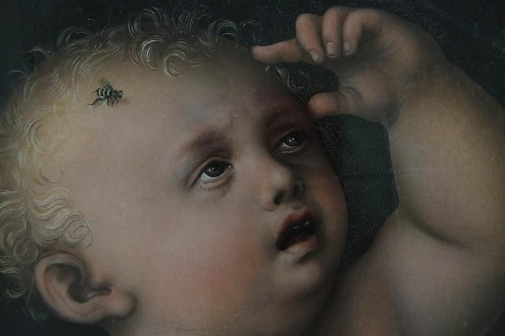 Lucas Cranach d. ältere