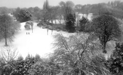 WhiteOut in Princes Park