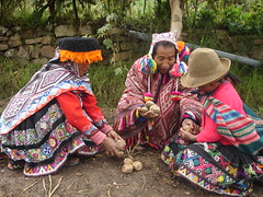 Thu, 12/01/2006 - 10:15 - Farmers sharing potatoes in the Potato Park, Peru  More information: biocultural.iied.org